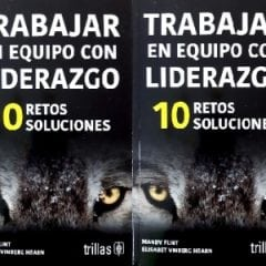Leading Teams is published in Spanish